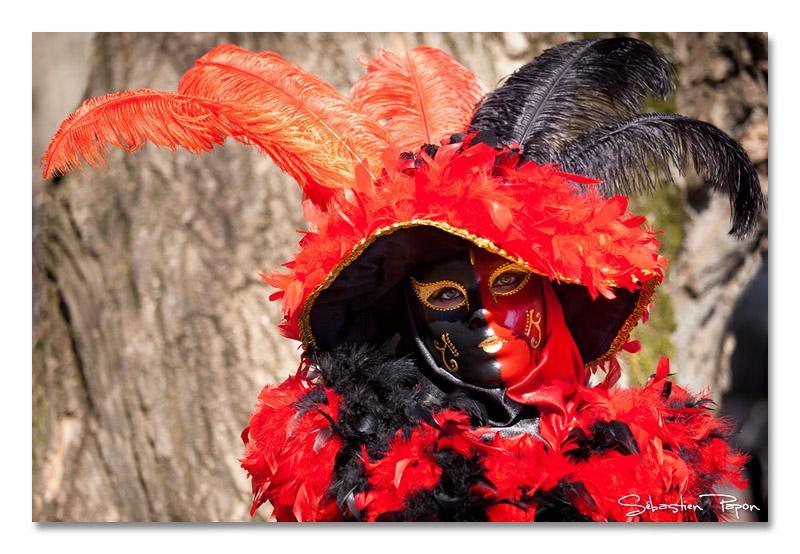 Carnaval_IMG_3887_800