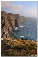 Cliffs of Moher 01