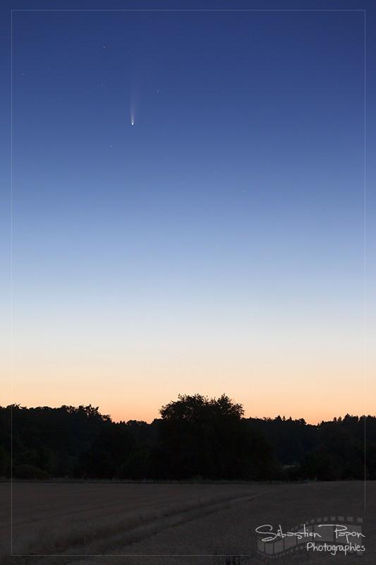 Comète C/2020 F3 Neowise