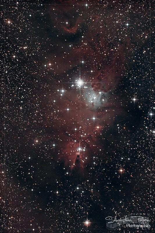 NGC 2264 - Nébuleuse du Cône