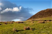 Slemish Mount